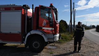 Άργος: Νεκρός εντοπίστηκε 81χρονος που είχε εξαφανιστεί
