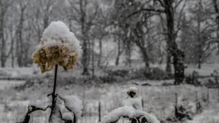 Καιρός: Παγετός, χιόνια, βροχές και πτώση της θερμοκρασίας την Τρίτη