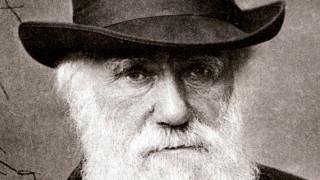 Ερευνητές πιστεύουν ότι ανακάλυψαν τη «μυστηριώδη» νόσο που βασάνιζε τον Δαρβίνο