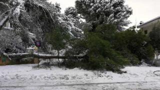 Καιρός – Χιόνια στην Αθήνα: Σοβαρά προβλήματα στον Προαστιακό