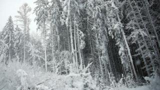 Χιονοκαταιγίδα: Το σπάνιο φαινόμενο που «χτύπησε» το Ηράκλειο