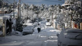 Η «Υπατία» σαρώνει τη χώρα: Κλειστά σχολεία, πυκνές χιονοπτώσεις και πολικές θερμοκρασίες