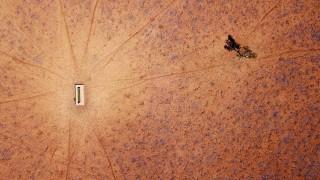 Καύσωνας σαρώνει την Αυστραλία: Αναγκάστηκαν να σκοτώσουν δεκάδες άλογα που ψυχορραγούσαν