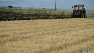 Επιδοτήσεις 14.000 ευρώ σε επαγγελματίες γεωργούς - Πού και πώς μπορούν να κάνουν την αίτηση
