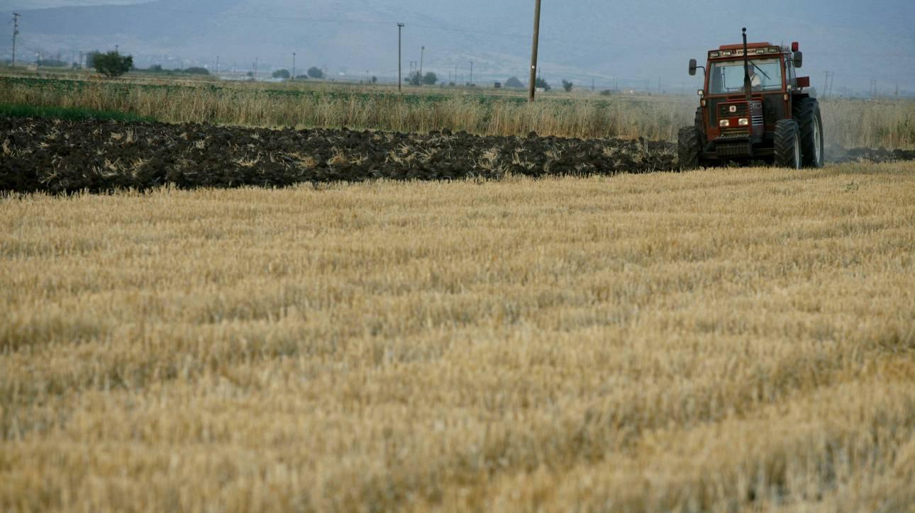 Επιδοτήσεις 14.000 ευρώ σε επαγγελματίες γεωργούς - Πώς να κάνετε την αίτηση