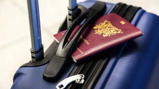 Σάλος σε αεροδρόμιο της Ινδίας: Εντόπισαν λεοπάρδαλη σε βαλίτσα επιβάτη