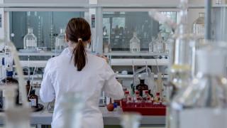 Ένα βήμα πιο κοντά στη δημιουργία ανθρώπινων νεφρών για μεταμόσχευση