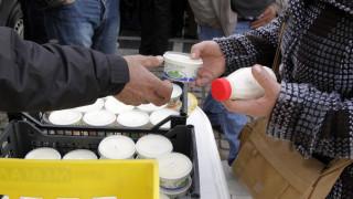 Μεγάλη «νίκη» της Ελλάδας: Τέλος στη χρήση του όρου «ελληνικού γιαούρτι» από την Τσεχία