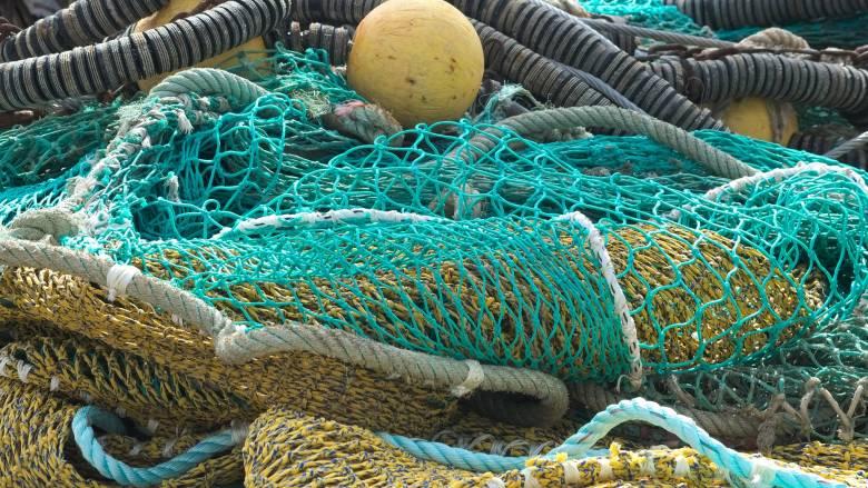 Σπάνια ψαριά στην Ιερισσό: Μάζεψε τα δίχτυα του και έβγαλε... καρχαρία