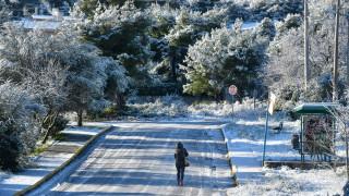 Καιρός: Η «Χιόνη» επελαύνει  με ανέμους 100 χλμ. και με θερμοκρασίες υπό το μηδέν