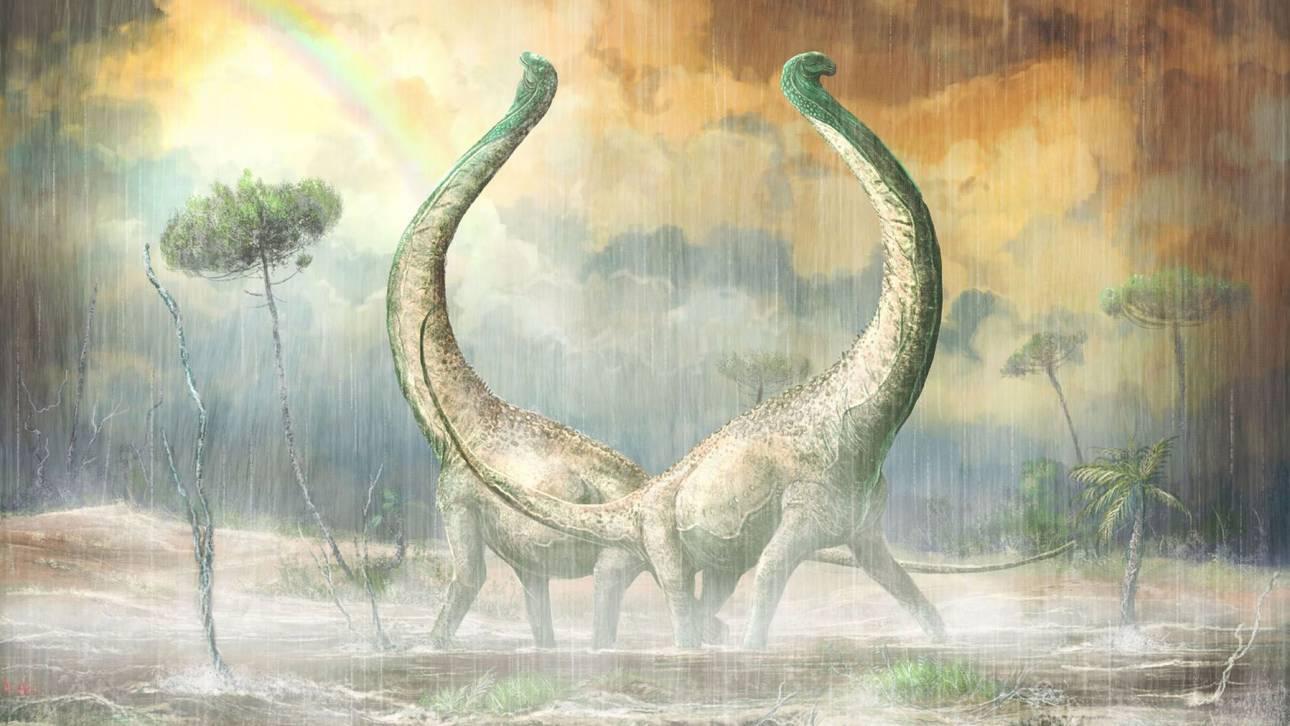 Ανακαλύφθηκε στην Τανζανία το απολίθωμα ενός ακόμη Τιτανόσαυρου