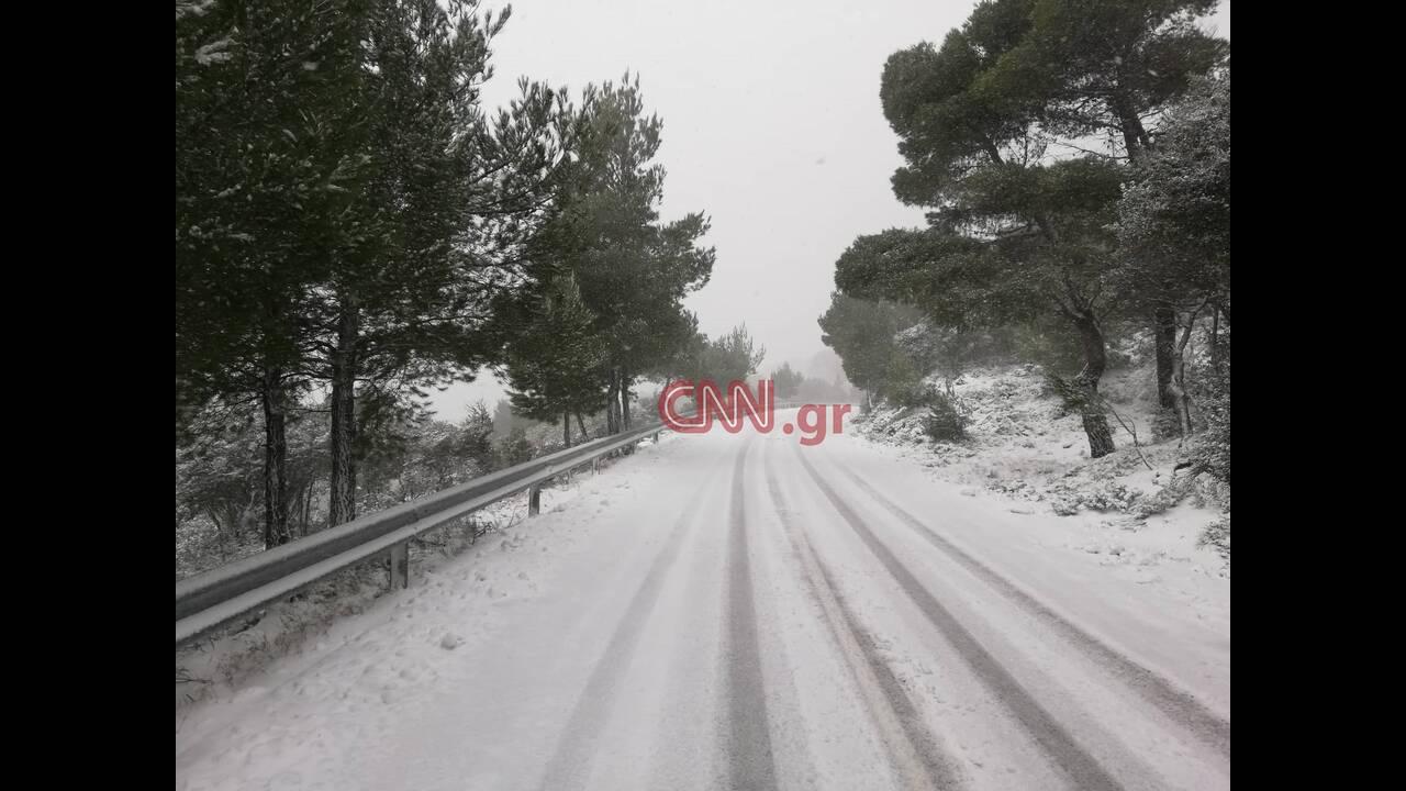 https://cdn.cnngreece.gr/media/news/2019/02/15/165750/photos/snapshot/51769690_400035853888438_6618510140318416896_n.jpg
