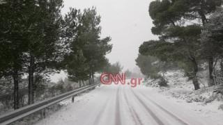 Καιρός: Κλειστή η Λεωφόρος Πάρνηθος λόγω της χιονόπτωσης