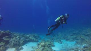 Άνδρας συνάντησε στον βυθό ένα… μυστηριώδες «θαλάσσιο ερπετό»