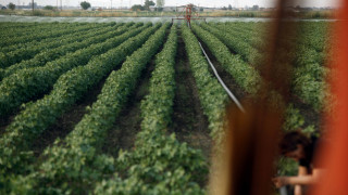 Σε εικοσαπλάσιες τιμές το αγροτικό νερό στη Θεσσαλία