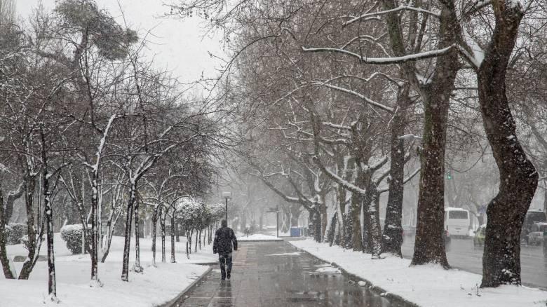 Η «Ωκεανίς» σαρώνει τη χώρα: Χιονοπτώσεις, θυελλώδεις άνεμοι και πολικές θερμοκρασίες