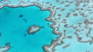 Περιβαλλοντική «βόμβα»: 1 εκατ. τόνους αποβλήτων θα ρίξει η Αυστραλία στον Μεγάλο Κοραλλιογενή Ύφαλο