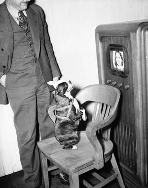 """1938 Ένας σκύλος παρακολουθεί με ενδιαφέρον την εικόνα της αφεντικίνας του, η οποία παίρνει μέρος στα πρώτα δοκιμαστικά για το νέο μέσο που ονομάζεται """"Τηλεόραση"""", στο Σαν Φρανσίσκο."""