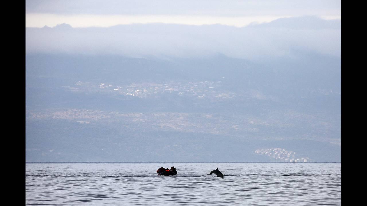 https://cdn.cnngreece.gr/media/news/2019/03/03/167702/photos/snapshot/behrakis-guardian-2.JPG