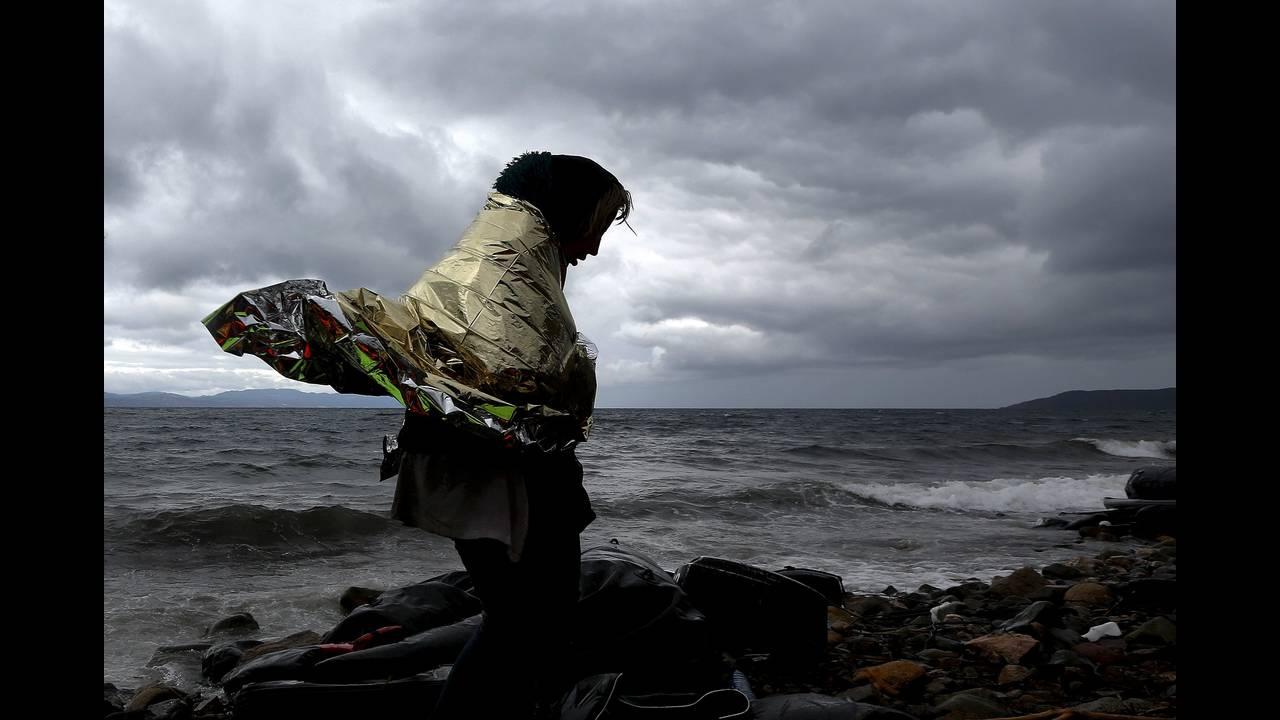 https://cdn.cnngreece.gr/media/news/2019/03/03/167702/photos/snapshot/behrakis-guardian-4.JPG