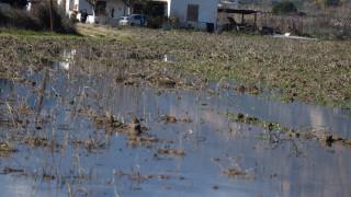 Σε κατάσταση έκτακτης ανάγκης η Χαλκίδα - Εγκαταλείπουν τα πλημμυρισμένα σπίτια τους οι κάτοικοι