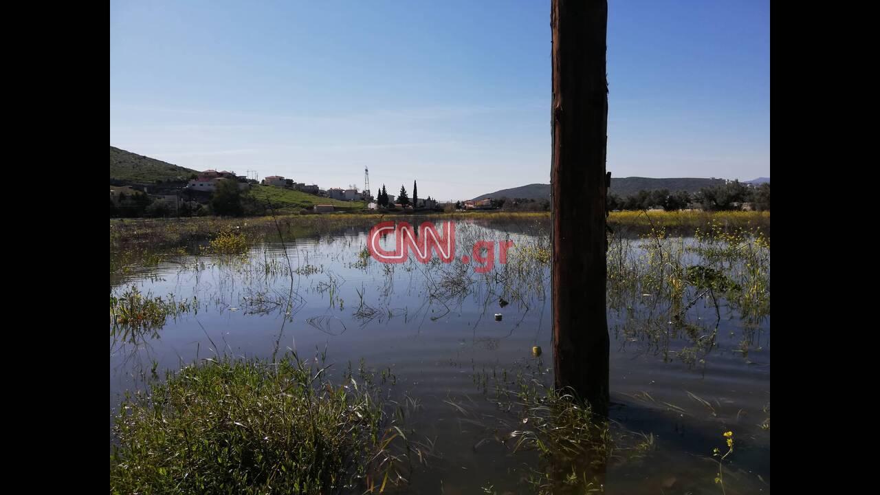https://cdn.cnngreece.gr/media/news/2019/03/06/168149/photos/snapshot/53192455_936313266572348_8494864911082455040_n.jpg