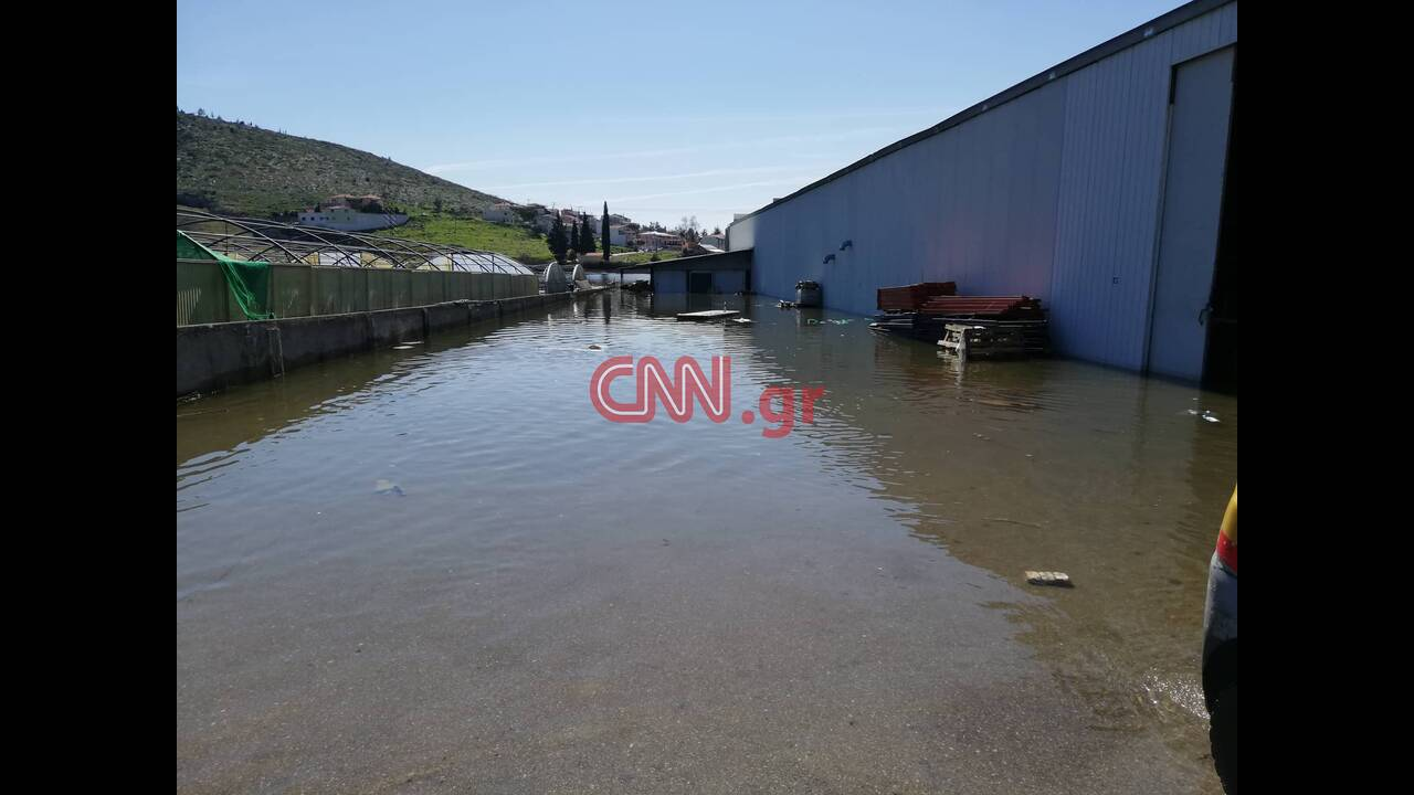 https://cdn.cnngreece.gr/media/news/2019/03/06/168149/photos/snapshot/53496343_1925237030931907_174486340639916032_n.jpg
