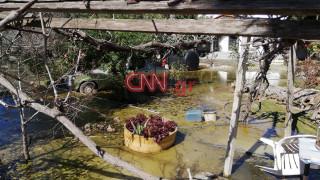 Το CNN Greece στη Χαλκίδα: Η γη αναβλύζει νερό - Κραυγή αγωνίας από τους κατοίκους