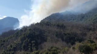Στις φλόγες η περιοχή Λογγιές στην Ελάτη Τρικάλων