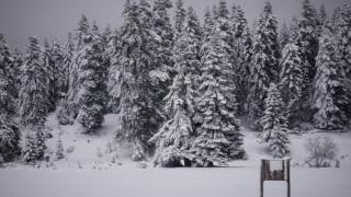 Καιρός: Στα λευκά τα ορεινά των Τρικάλων