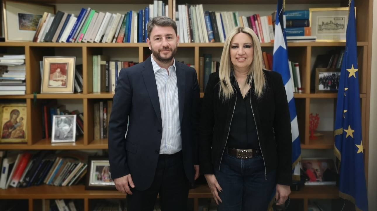 Ευρωεκλογές 2019: Ο Νίκος Ανδρουλάκης εκ νέου υποψήφιος