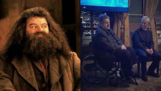 Σε αναπηρικό καροτσάκι ο ηθοποιός που υποδύθηκε τον Χάγκριντ στο «Χάρι Πότερ»