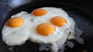 Νέα επιστημονική έρευνα: Άσχημα νέα για όσους τρώνε πολλά αυγά