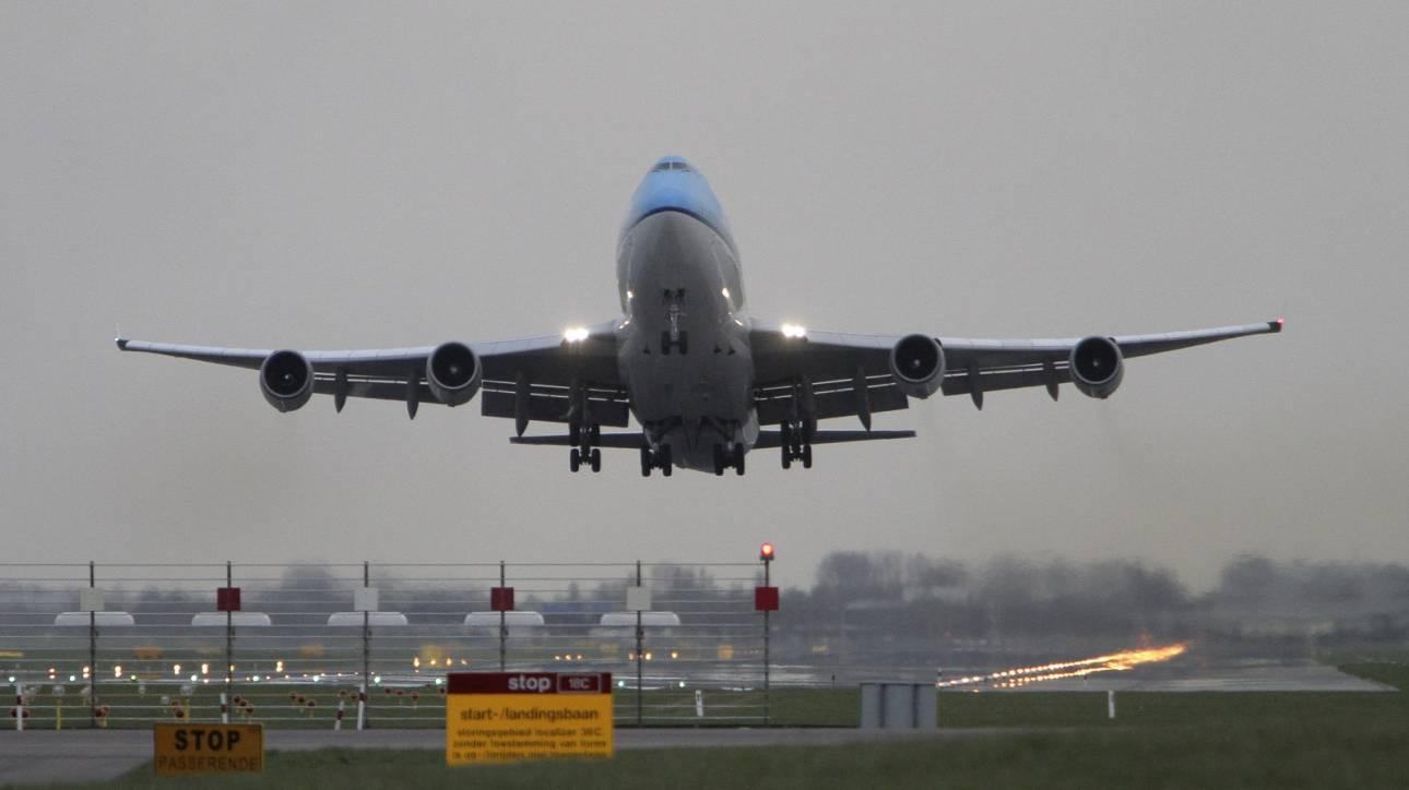 Νεκρός εντοπίστηκε σκύλος σε αεροπλάνο