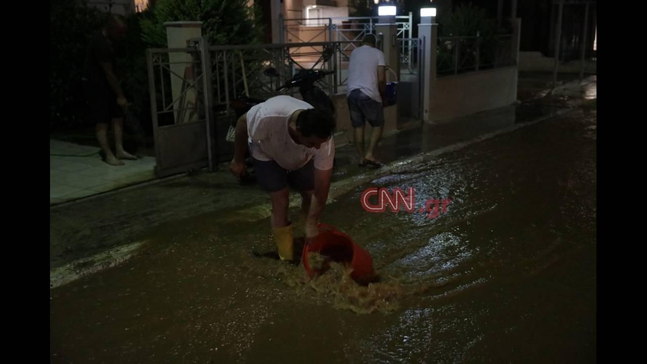 https://cdn.cnngreece.gr/media/news/2019/03/21/170034/photos/snapshot/4796522368_LP2_1783.jpg