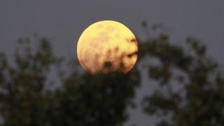 Παγκόσμια Ημέρα Νερού 2019: Παραγωγή... στο φεγγάρι «βλέπουν» οι επιστήμονες