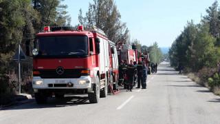 Καλύτερη η εικόνα από τη φωτιά στο Πλωμάρι Μυτιλήνης