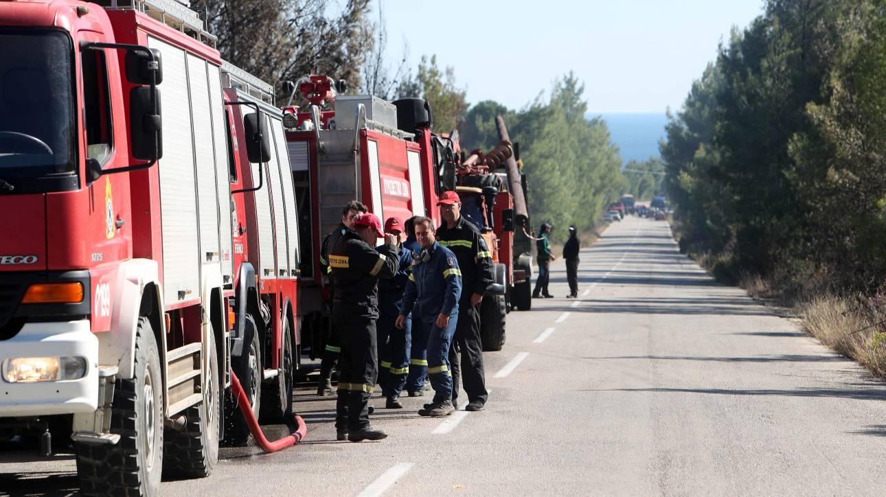 Κρήτη: Μεγάλη φωτιά στην Ιεράπετρα