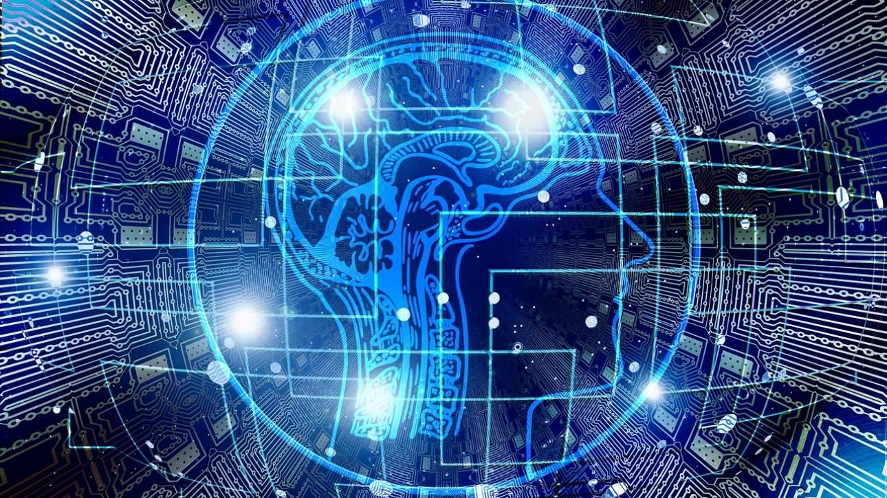 Υπάρχει γυναικείος και ανδρικός… εγκέφαλος;