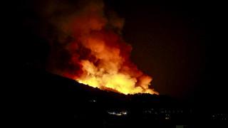 Ηλεία: Ολονύχτια μάχη με τις φλόγες στο προστατευόμενο δάσος της Στροφυλιάς