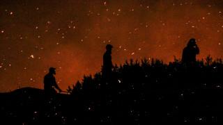 Εικόνες καταστροφής: Στάχτη 2.000 προστατευόμενα στρέμματα στο δάσος της Στροφυλιάς