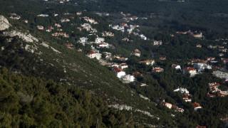 ΣτΕ: Αντισυνταγματικός ο νόμος που εξαιρούσε τα αυθαίρετα από τους δασικούς χάρτες