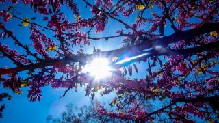 Καιρός: Φθινοπωρινό το σκηνικό - Βροχές, καταιγίδες και μικρή άνοδος της θερμοκρασίας
