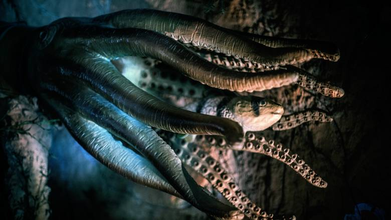 Είναι αυτός ο τερατώδης «Κθούλου»; Το μυθικό θαλάσσιο πλάσμα που προκαλεί τρόμο