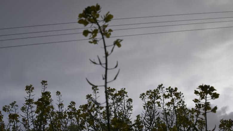 Άστατο το σκηνικό του καιρού: Καταιγίδες και λασποβροχές