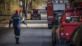 Κόνιτσα: Επιχείρηση διάσωσης πεζοπόρου που έπεσε σε χαράδρα