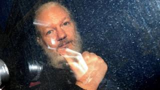 Wikileaks: O γάτος του Ασάνζ είναι ασφαλής (vid)