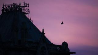 Παναγία των Παρισίων: Η μέρα που «γκρεμίστηκε η καρδιά του Παρισιού»