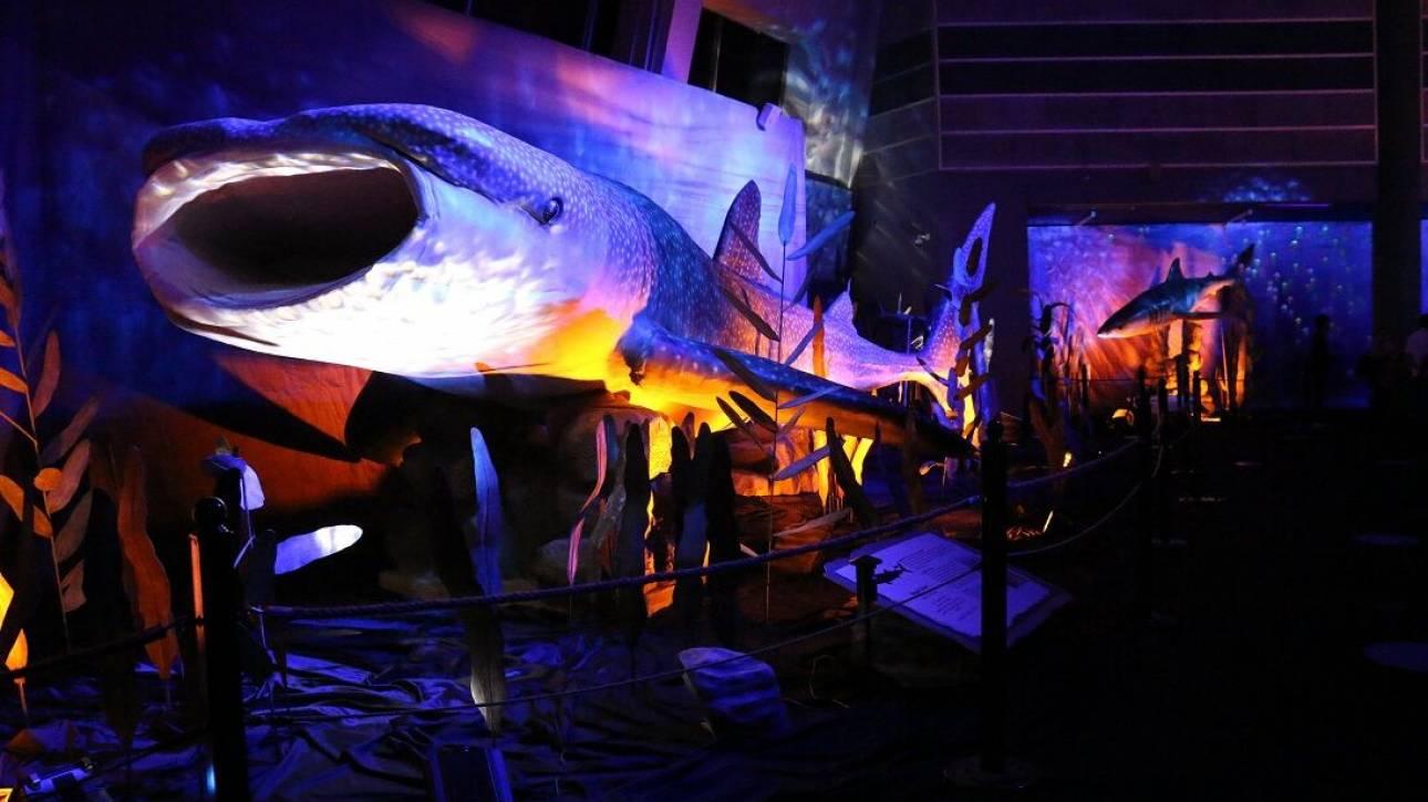Δεινόσαυροι και προϊστορικά τέρατα των θαλασσών στον «Ελληνικό Κόσμο»