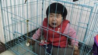 Πατέρας κλείδωνε το μωρό του σε κλουβί για να εκδικηθεί την πρώην σύζυγό του